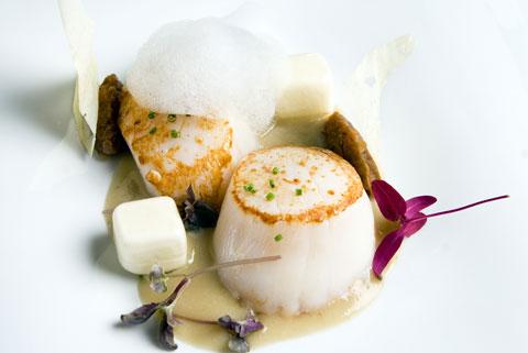 www.restaurantum.com_-_Restaurante_Botic_-_Vieira_con_crema_de_berenjena_ahumada_y_ravioli_de_Idiazábal.jpg