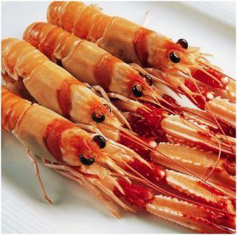 www.restaurantum.com_-_Restaurante_Medulio_-_Cigalas.jpg